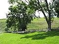 A temporary halt beneath the trees - geograph.org.uk - 493008.jpg