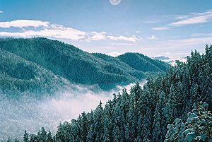 Meskheti Range - Meskheti Range near Abastumani, Georgia