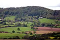 Abberley Hill from Heightington - geograph.org.uk - 36521.jpg