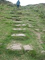 Access steps from the Deerpark up to Wooltack Point - geograph.org.uk - 1517135.jpg
