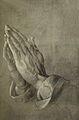 Adolphe Braun-Dürer.jpg