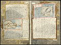 Adriaen Coenen's Visboeck - KB 78 E 54 - folios 121v (left) and 122r (right).jpg
