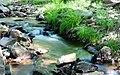 Agua fresca (31061423818).jpg