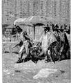 Aimard - Les Chasseurs d'abeilles, 1893, illust page 149.png