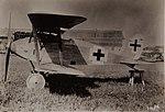 Albatros D.XII.jpg