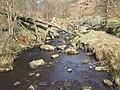 Alcomden Water - geograph.org.uk - 615905.jpg