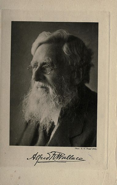 File:Alfred Russel Wallace BHL21397120.jpg