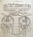 Alhazen1652.png