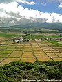 Altares - Ilha Terceira - Portugal (8215981809).jpg