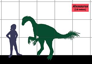 Alxasaurus - Size compared to a human