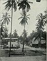 Am Tendaguru - Leben und Wirken einer deutschen Forschungsexpedition zur Ausgrabung vorweltlicher Riesensaurier in Deutsch-Ostafrika (1912) (17977262778).jpg