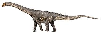 Sauropoda - Reconstruction of Ampelosaurus