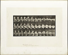 Animal locomotion. Plate 263 (Boston Public Library).jpg
