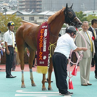 Rose Stakes - 2010 Rose Stakes winner