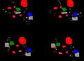 Anomerism V.3.png