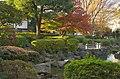 Arai-Yakushi Park Pond - 新井薬師公園池 - panoramio (3).jpg