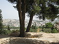 Archeological park of Ramat Rachel IMG 2257.JPG
