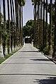 Architecture, Arizona State University Campus, Tempe, Arizona - panoramio (238).jpg