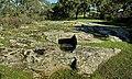 Area archeologica di Pranu Muttedu - Domus de janas 01.jpg