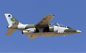 Argentina Air Force FMA IA-63 Pampa Lofting-3.jpg