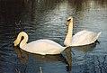 Around Abingdon, Oxfordshire (270030) (9453569593).jpg