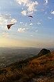 Asa Delta e Paraglider no sunset (8028581142).jpg
