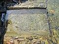 Ascona Antico Lavatoio.JPG