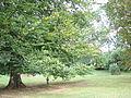 Aubange - Domaine du Clémarais - 7.JPG