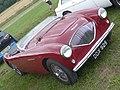 Austin-Healey 100 (1956) (36040474151).jpg