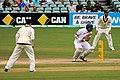 Australia v England (2nd Test, Adelaide Oval, 2013-14) (11287591354).jpg