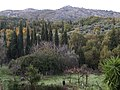 Autumn images - panoramio (2).jpg