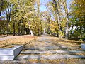 Autumn in the park of Revolution - panoramio.jpg