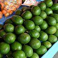 Avocados Warorot Chiang Mai.jpg
