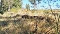BA-Ruinas villa romana Pesquero. 04.jpg