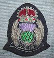 BADGE - Scotland - Scottish National Senior police officer 5 (7980567029).jpg