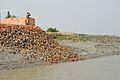 BSF Personnel - Taki - River Ichamati - North 24 Parganas 2015-01-13 4470.JPG