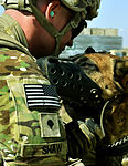 Bagram pararescueman train with Army, to save military canines 130621-F-IW762-259.jpg
