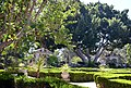 Balboa Park, San Diego, CA, USA - panoramio (59).jpg