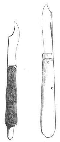 Baltet - L'art de greffer - fig5.jpg