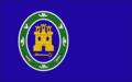 Bandera torres barbues color.png