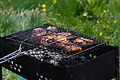 Barbecue (5804047450).jpg