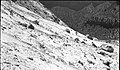 Base of talus from rock slide in Birch Creek Canyon. ; ZION Museum and Archives Image Zion 13504 107.06 Neg1124 ; ZION 13504 (69034735975344479f5764477cc5cd2a).jpg