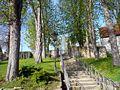 Baumgang bei Maßbach.jpg
