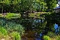 Bavarian Forest (156408289).jpeg