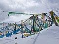 Bayi, Nyingchi, Tibet, China - panoramio (25).jpg