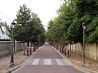 Beauchamp - Avenue des Sapins 02.jpg