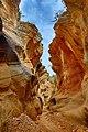 Beautiful Slot Canyon (71565357).jpeg