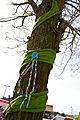 Bestrickter Baum.jpg
