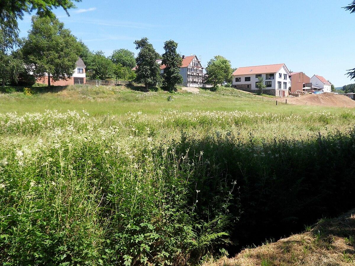 Bierbach