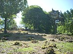 Bigbury Camp hillfort 03.JPG